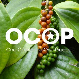 Sản phẩm OCOP Việt Nam