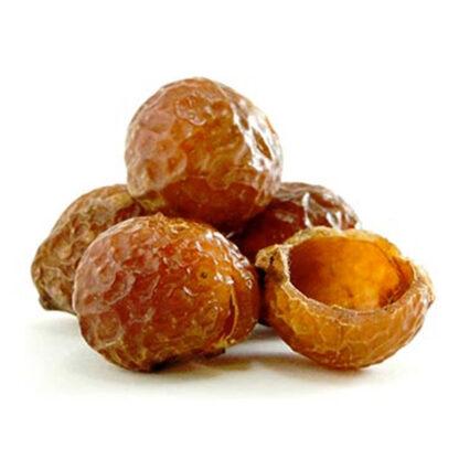 Trái bồ hòn (soap nut) tách hạt