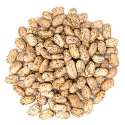 Đậu cúc hữu cơ (pinto beans)