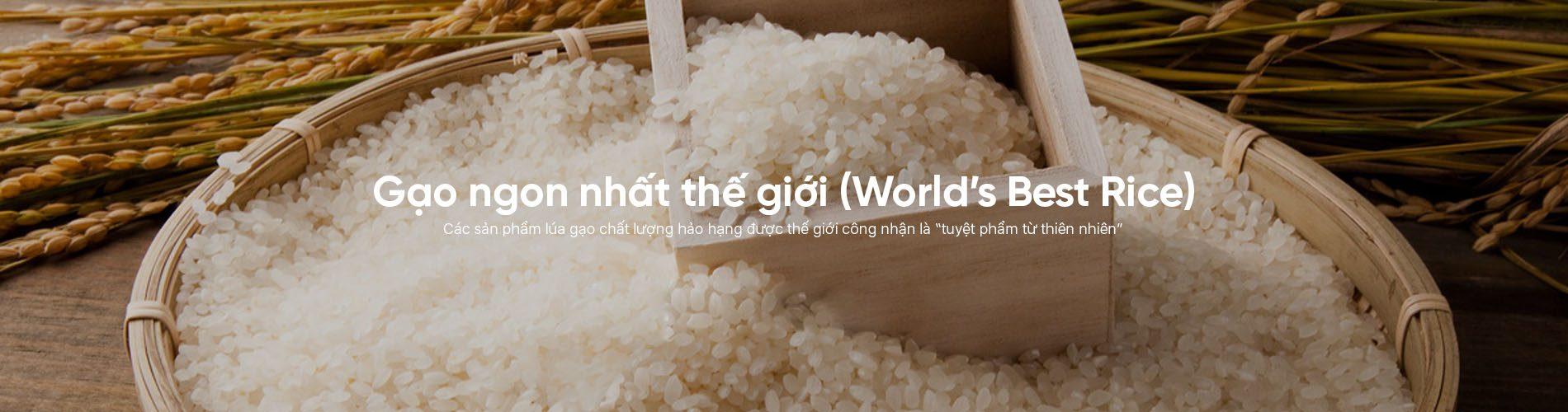 Gạo ngon nhất thế giới (World's Best Rice)
