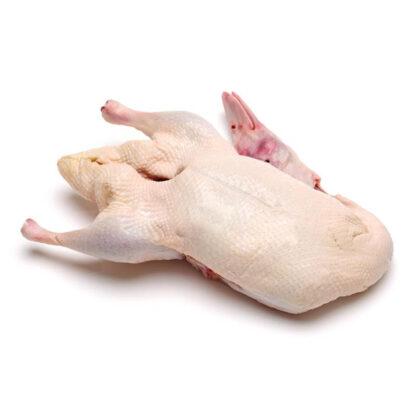 Thịt vịt trời nguyên con