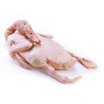 Thịt vịt xiêm hữu cơ